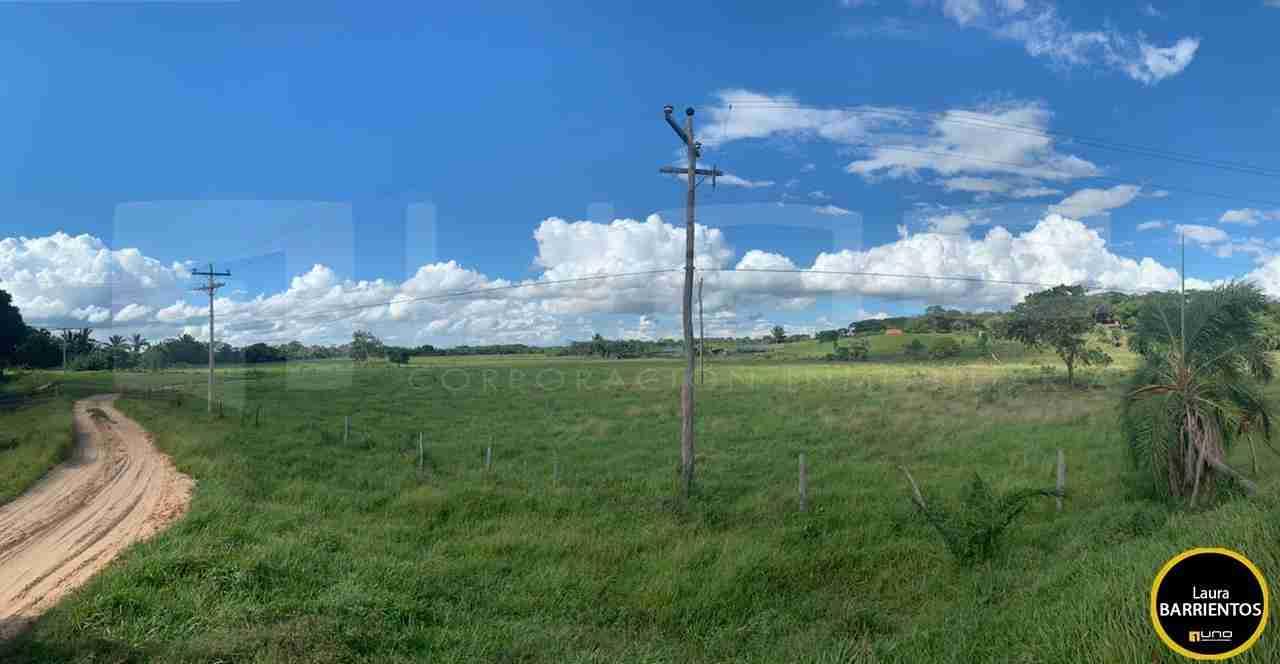 7 Venta Terreno de 24 hectareas zona Urubo, sobre Camino a la Belgica