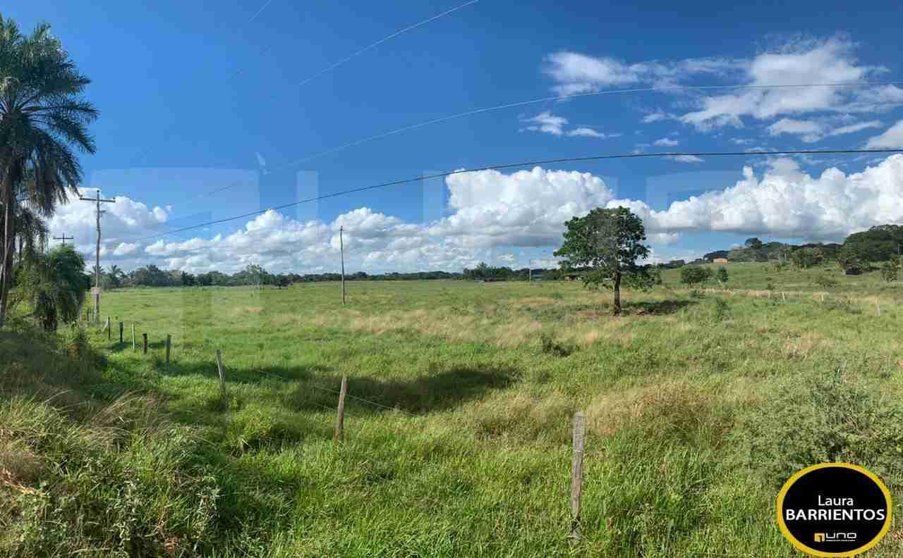 8 Venta Terreno de 24 hectareas zona Urubo, sobre Camino a la Belgica