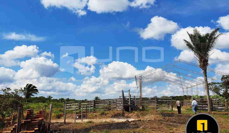 11-propiedad-en-urubo-zona-tarumatu-municipio-porongo-santa-cruz-bolivia