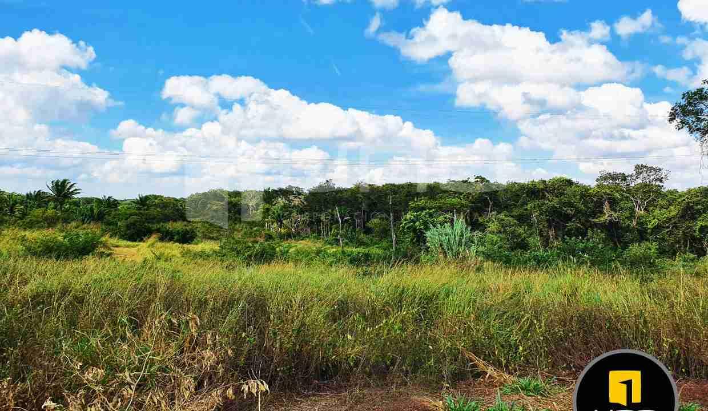 12-propiedad-en-urubo-zona-tarumatu-municipio-porongo-santa-cruz-bolivia