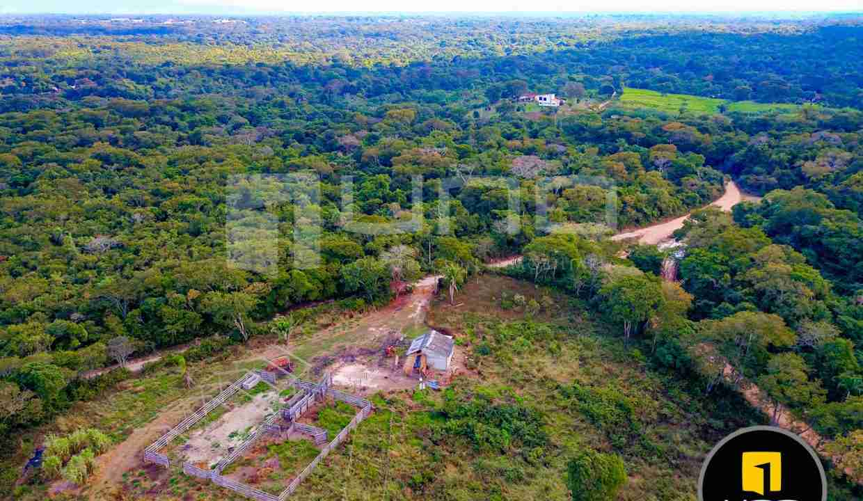 6-propiedad-en-urubo-zona-tarumatu-municipio-porongo-santa-cruz-bolivia