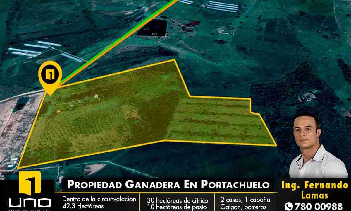 Venta de propiedad ganadera en Portachuelo, Santa Cruz, Bolivia (1)